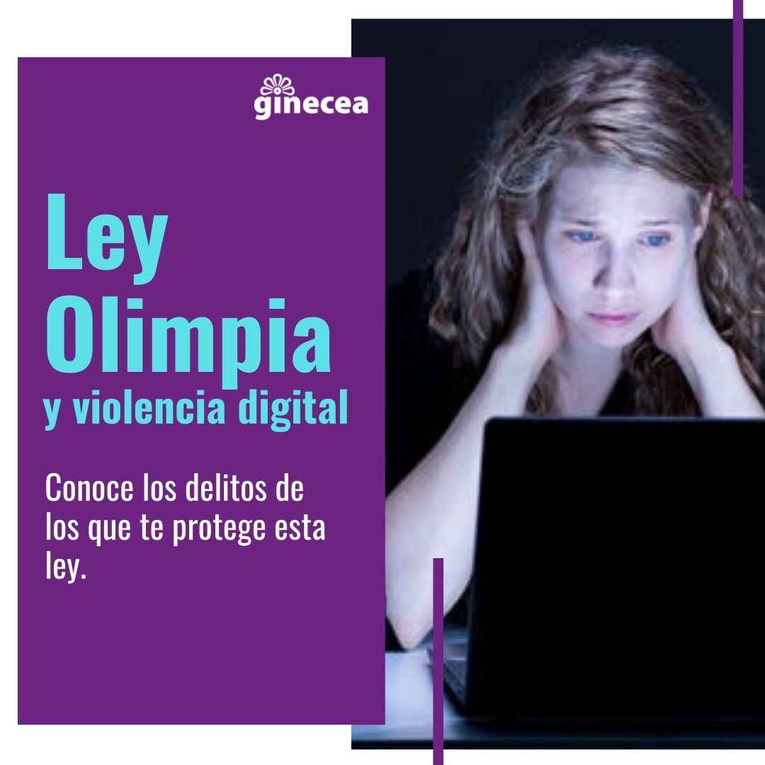 ley oilimpia: proteccion a las mujeres contra violencia cibernética